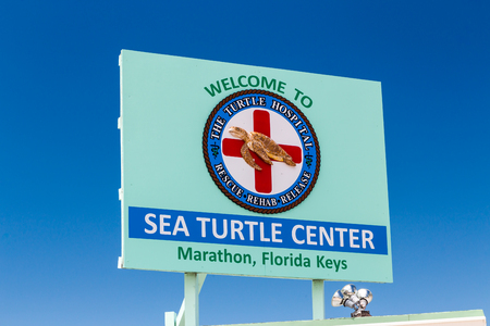MARATHON, FLA/USA - APRIL 13, 2017: Sea Turtle Center exterior sign and logo. The Turtle Hospital rehabilitates injured Sea Turtles in the Florida Keys.