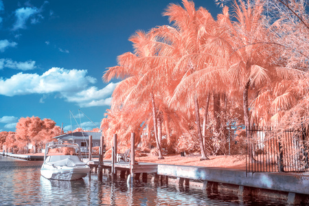 infra red: Fort Lauderdale Intracoastal waterway in color infrared.