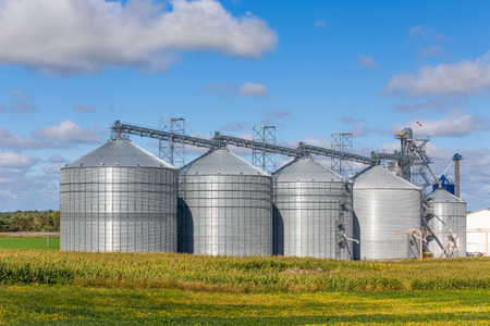 Five round metal grain elevator bins in corn fileld in the United States.