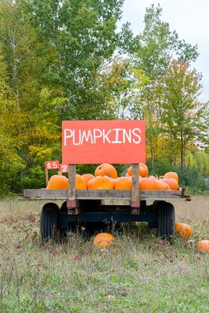 Pumpkin cart in rural United States in Autumn near Hallloween.
