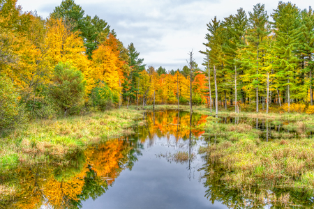 Vibrant seasonal autumn colors and water near Cumberland, Wisconsin, USA.