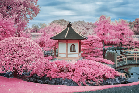 Infared color image of Japanese pagoda, water, and bridge. Stock Photo