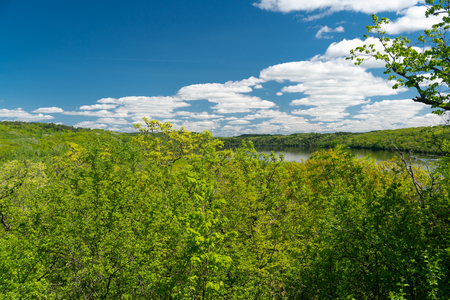 The St. Croix River from Afton State Park, Minnesota in spring with verdant green foliage and blue skies.