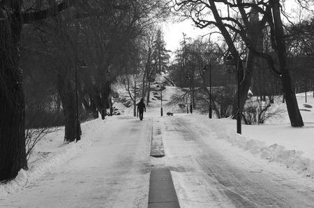 Park in Finnish winter photo