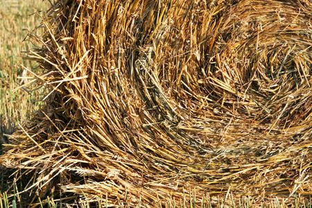 Haystack densely braided on a floor