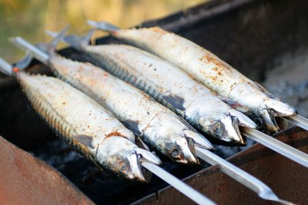 The mackerel on a grill is fried in the open air