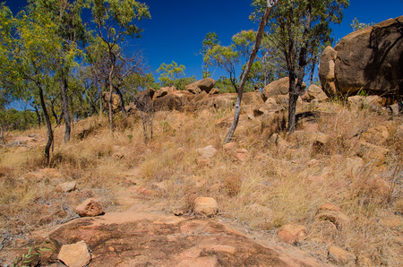 australian outback: Parched scrubland in the Australian Outback. Stock Photo