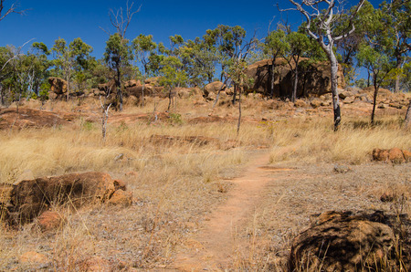 lonesomeness: Desolated hiking trail in the australian outback between eucalyptus and rocks.
