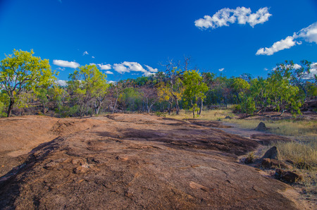 lonesomeness: Eucalyptus forest and rock formationl in the Undara Volcanic National Park, Queensland, Australia.