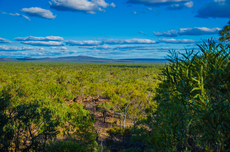 lonesomeness: View on the  bush land in the Undara Volcanic National Park.