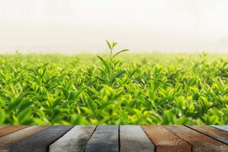 wood floor on green tea and fresh leaves