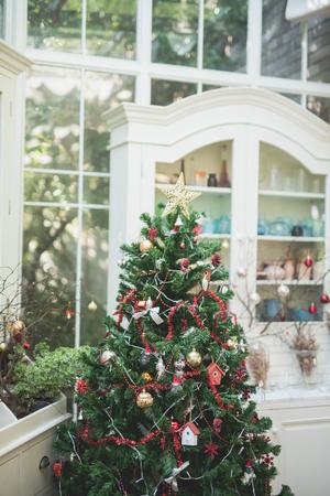 christmas decoration and Pine tree