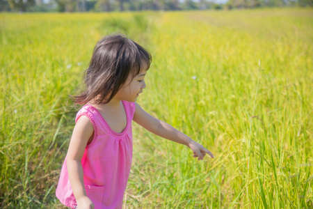 A lovely Thai girl, about three and a half years old in the traditional cloth, is playing happily on the rice field, and it can only be found in the countryside.