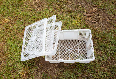 White plastic box (or basket) with lids is placed on the green grass which is ready for harvesting fruit, vegetable and agricultural products in the rural organic garden.