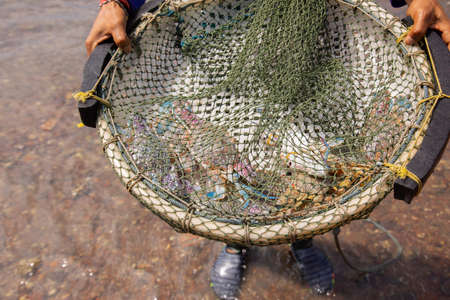 Close up shot of living crab in net trap with background of water in river or sea in summer time shows sustainable tourism concept which traveler can traditionally catch crab and other seafood animal.