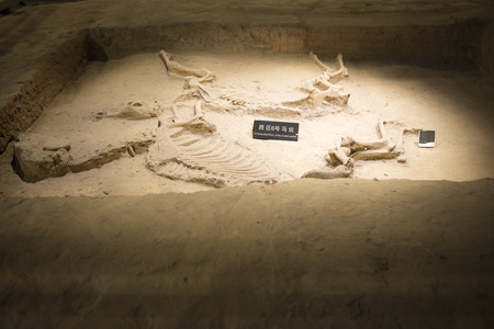 羅陽博物館の内部を訪問
