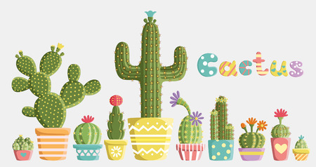 cactus flower: Set of cacti in pots of different shapes and colors