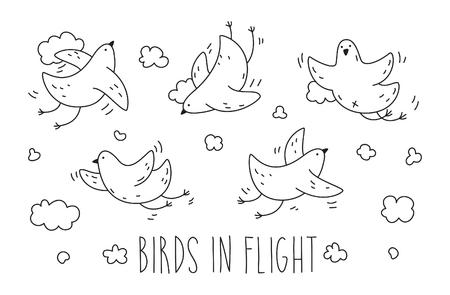 Set of birds in flight. Graphics illustration