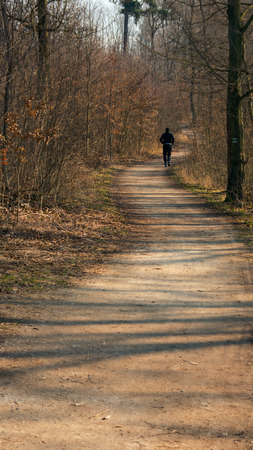 A distant runner on the twisting forest road