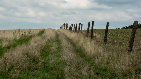Old wooden fence along the car tracks in the dry meadow