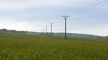 Landscape power poles with power lines with a mist in the background Stock Photo