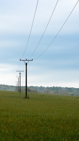 Portrait picture of power pole with power lines