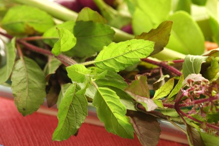 Holy Basil (Bai Grapow) Peppery is perhaps the best way to describe this type of basil, which is used in stir-fries. Holy Basil is typically not eaten raw and can be frozen or dried for later use. Stock Photo