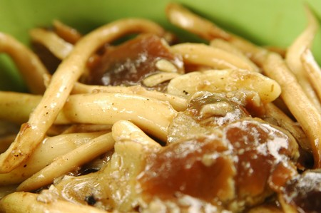 Fried honey mushroom photo