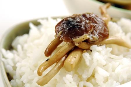 Fried honey mushroom photo