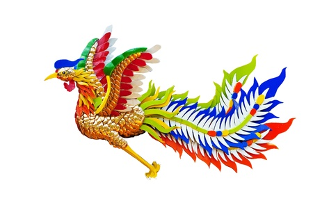 Chinese Phoenix,phuket,thailand  photo