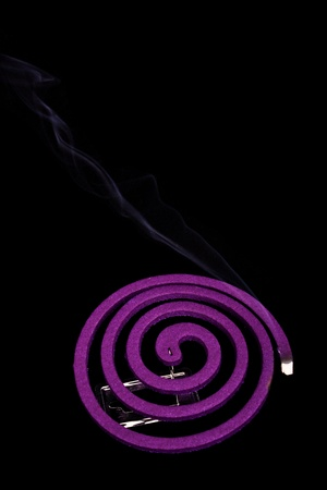 Mosquito coil  photo