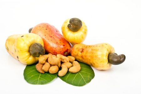 fresh cashew nut Stock Photo