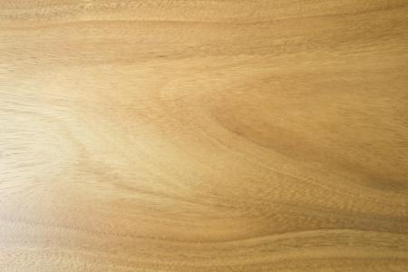 arbre de textures de bois