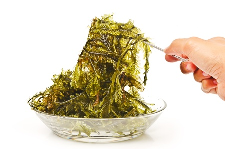 macroscopic: Seaweed is a loose colloquial term encompassing macroscopic, multicellular, benthic marine algae