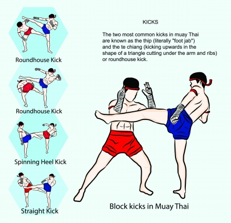 hand drawn Thai martial arts and muay thai boran