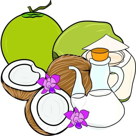 aceite de coco: mano de la cuerda de aceite de coco y el coco Vectores