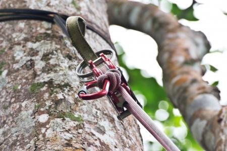polea: equipo de escalada, la polea Foto de archivo