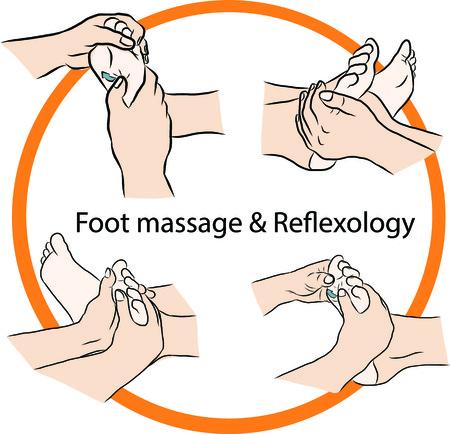 reflexology: Hand draw Reflexology