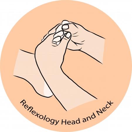 Hand draw Reflexology Stock Vector - 23078550