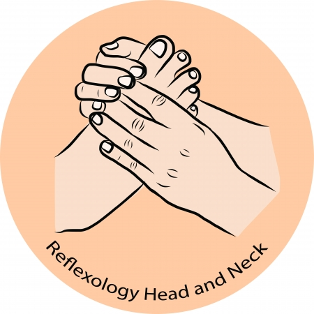 Hand draw Reflexology Vector