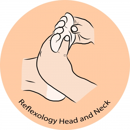 Hand draw Reflexology Stock Vector - 23078552