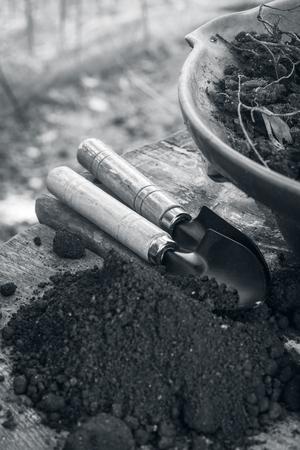 outils de jardin sur les pots à bonsaï