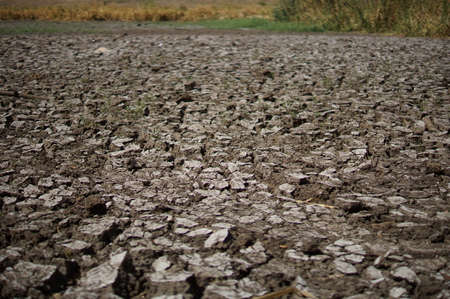 Dry lake or swamp in the process of drought and lack of rain or moisture, a global natural disaster. The cracked soil of the earth Foto de archivo