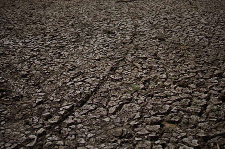 Dry lake or swamp in the process of drought and lack of rain or moisture, a global natural disaster. The cracked soil of the earth