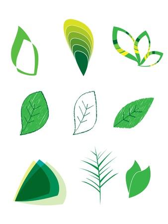 Green Leaf Logos Vector