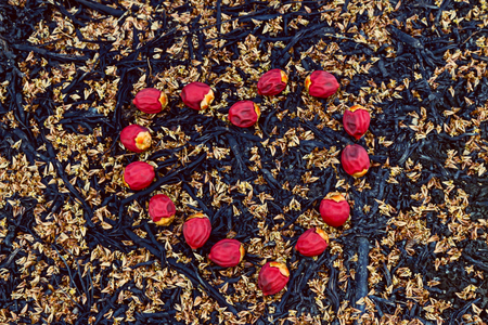 sealing: sealing wax palm fruits or lipstick fruits in heart form