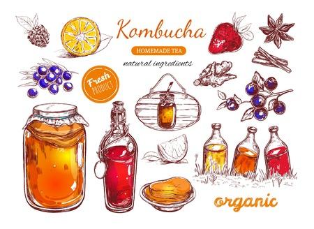 Kombucha collection de thé maison. Illustration dessiné à la main à vecteur. Objets isolés sur blanc Banque d'images - 84806770