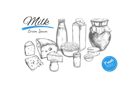 Dairy products vector collection. Cow, milk products, cheese , butter, sour cream, curd, yogurt. Farm foods. Hand drawn illustration. Isolated objects on white. Milk concept 矢量图像
