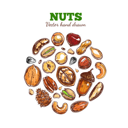 Nuts and seeds collection. 版權商用圖片 - 91055826