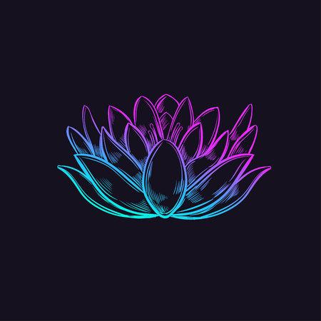 Sketch style Lotus Ilustração